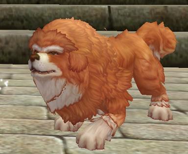灵兽召唤符(松狮犬)