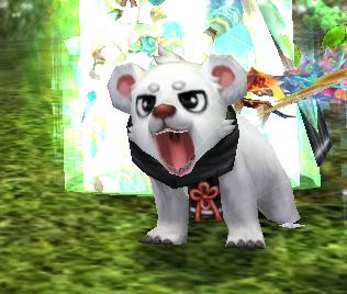 灵宠小白熊(活动)