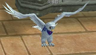 灵兽召唤符(雪翼雕)